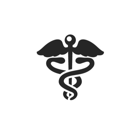 healthcare administration online